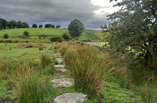 300 acres of unspoilt Dartmoor countryside